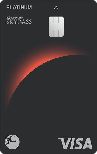 플래티늄 스카이패스 카드